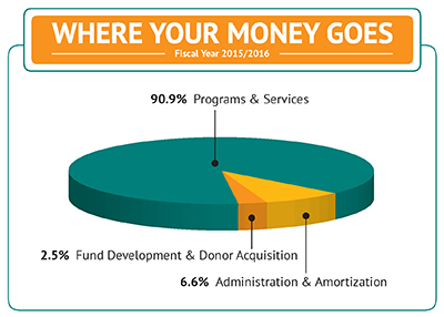 Where you money goes pie chart